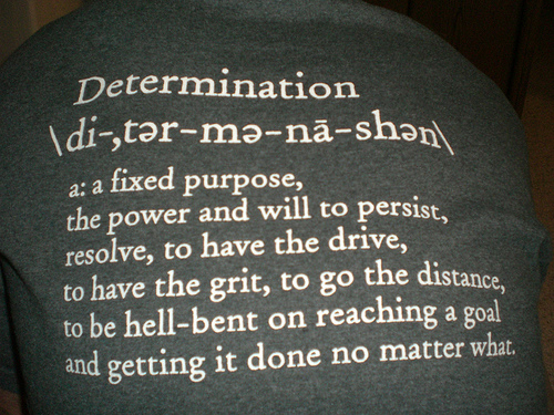 determination, persistence quotes