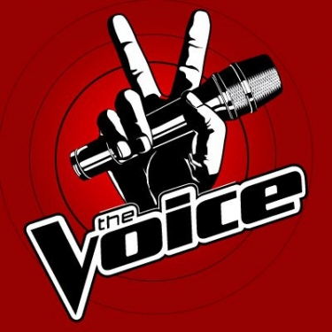 "business lessons from NBC's ""the voice"""